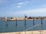 Port Forum-5
