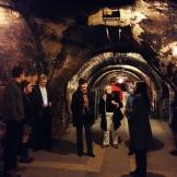 day 2_Codorniu Winery visit